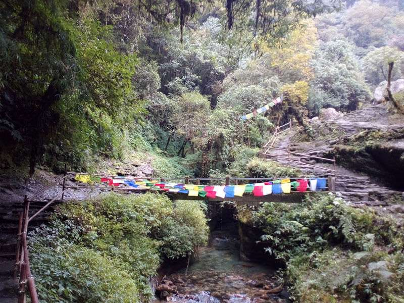 Trail to Ghorepani